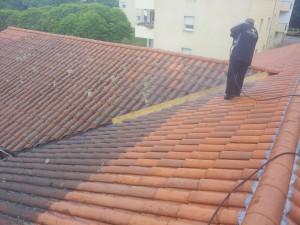 Nettoyage-toiture-Lyon-Démoussage-traitement-69